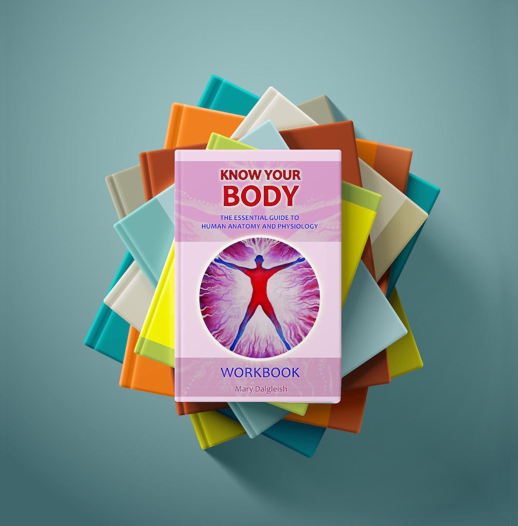 Know Your Body Workbook